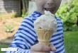 Deliciously creamy 2 ingredient ice cream